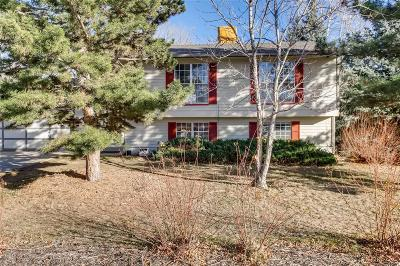Single Family Home Active: 3298 South Dudley Court
