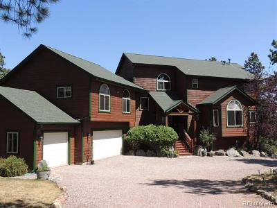Bailey Single Family Home Active: 163 Old Corral Road