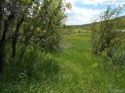 Oak Creek, Phippsburg, Yampa, Toponas Residential Lots & Land Active: 28350 Routt County Rd. 14