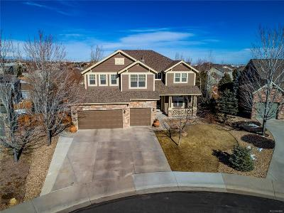 Castle Rock Single Family Home Under Contract: 6213 Hawks Eye Court