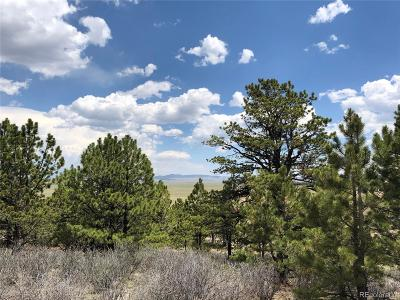 Hartsel Residential Lots & Land Active: 7505 Ranch Road