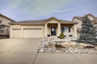 Castle Rock Single Family Home Active: 1291 Exquisite Street