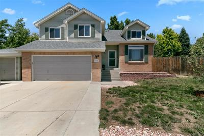 Single Family Home Under Contract: 9937 Garfield Court