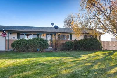 Adams County Single Family Home Active: 19980 East 108th Place