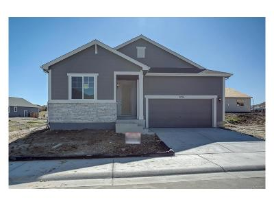 Castle Rock CO Single Family Home Active: $452,398