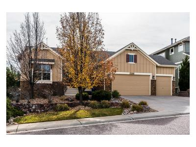 Douglas County Single Family Home Active: 7266 Winter Berry Lane