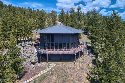 Nederland Single Family Home Under Contract: 918 Ridge Road