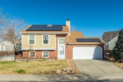 Denver Single Family Home Active: 4507 Gibraltar Way
