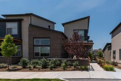 Lone Tree Rental Active: 10132 Belvedere Loop