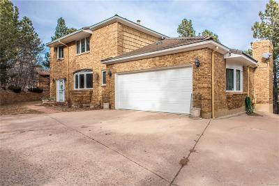 Colorado Springs Single Family Home Active: 702 Southern Cross Place