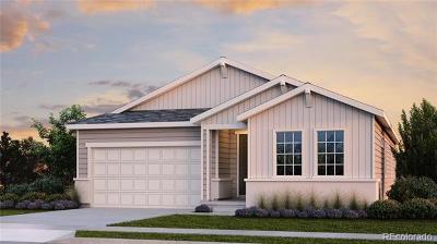 Brighton Single Family Home Active: 4397 Prairie Drive