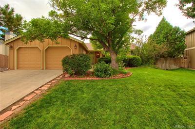 Denver Single Family Home Under Contract: 4517 Ensenada Street