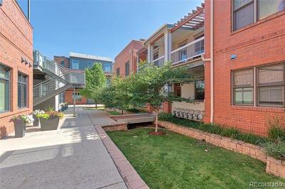 Boulder Condo/Townhouse Active: 2320 Spruce Street #3
