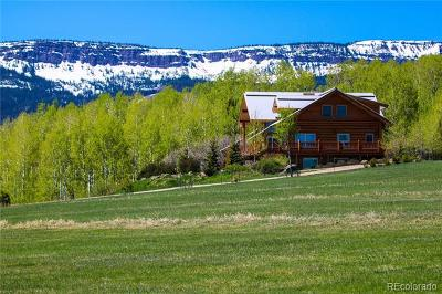Routt County Single Family Home Active