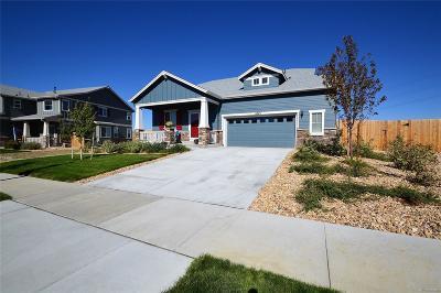 Aurora Single Family Home Active: 6325 South Harvest Street