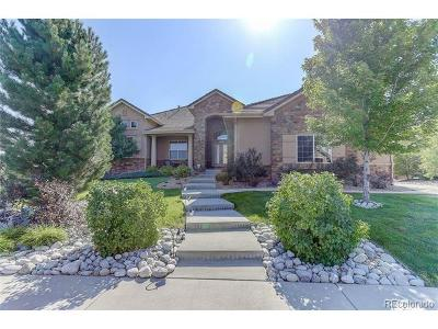 Douglas County Single Family Home Active: 5636 Vistancia Drive