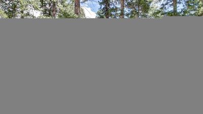 Woodland Park Single Family Home Under Contract: 1308 Spruce Ridge Lane