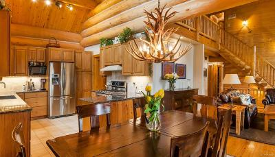 Evergreen Single Family Home Under Contract: 29413 Grayhawk Drive
