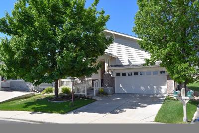 Heritage Eagle Bend Single Family Home Active: 23446 East Canyon Place