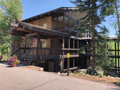 Steamboat Springs CO Single Family Home Active: $289,000