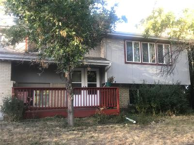 Littleton CO Single Family Home Active: $300,000