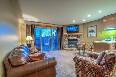 Steamboat Springs CO Condo/Townhouse Under Contract: $225,000