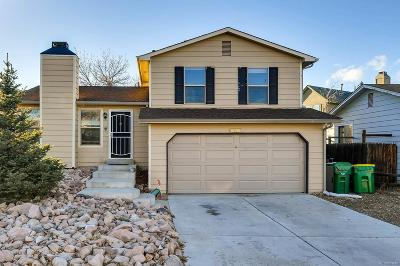 Douglas County Single Family Home Active: 16908 Blue Mist Circle