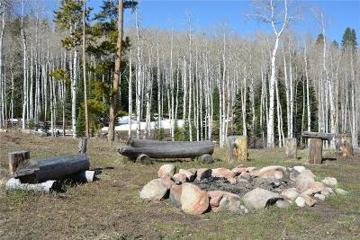 Oak Creek, Phippsburg, Yampa, Toponas Residential Lots & Land Active: 21525 Green Ridge Court