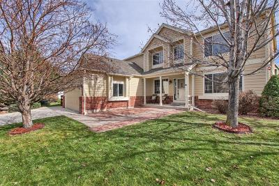 The Meadows Single Family Home Active: 4588 Buena Vista Court