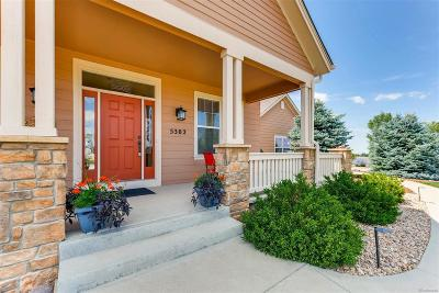 Castle Rock Single Family Home Under Contract: 5302 Danvers Court