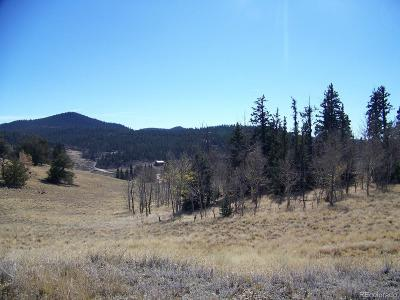Park County Residential Lots & Land Active: 501 Gitche Goone Lane