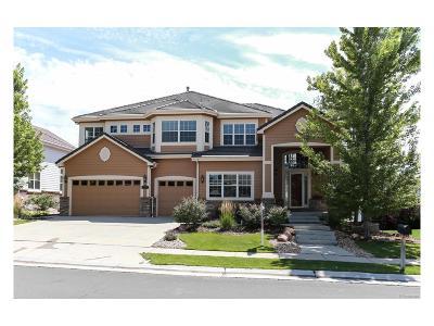 Aurora Single Family Home Active: 22016 East Ridge Trail Circle