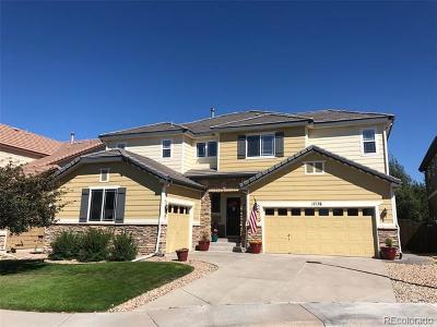 Parker Single Family Home Active: 17176 Knollside Avenue