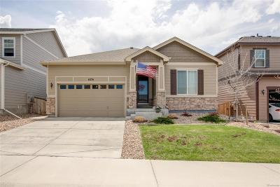 Douglas County Single Family Home Active: 6376 Blue Water Circle