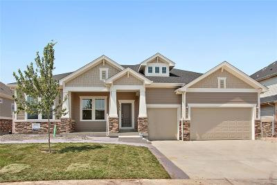 Aurora Single Family Home Active: 8625 South Zante Court