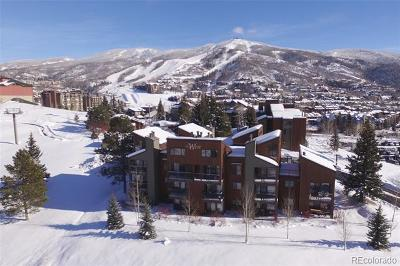 Steamboat Springs CO Condo/Townhouse Active: $295,000