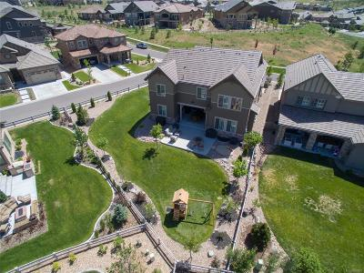 Highlands Ranch Single Family Home Under Contract: 10584 Skydance Drive