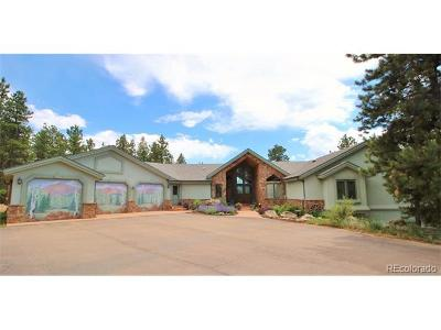Woodland Park Single Family Home Active: 506 Mills Ranch Road