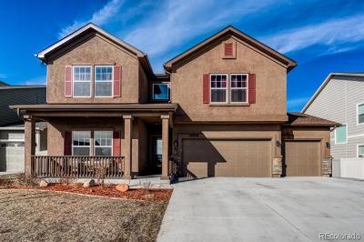 Fountain Single Family Home Active: 10978 Hidden Prairie Parkway