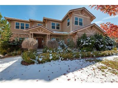 Aurora Single Family Home Active: 26706 East Peakview Drive
