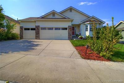 Castle Rock Single Family Home Active: 1063 Bulrush Drive