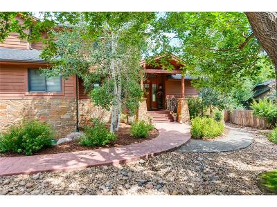 Morrison Single Family Home Active: 181 Red Rocks Vista Lane