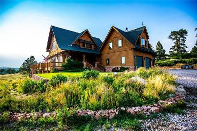 Castle Rock CO Single Family Home Active: $1,395,000