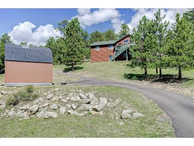 Bailey Single Family Home Under Contract: 29 Pine Trail