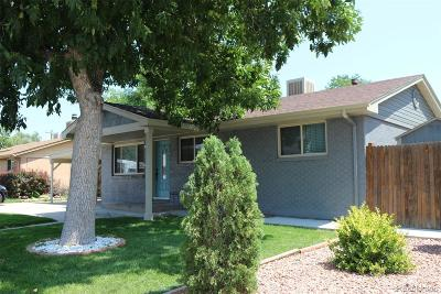 Arvada Single Family Home Active: 6440 Xavier Court