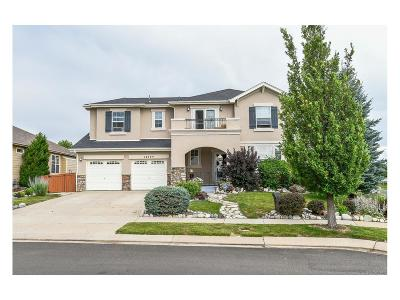 Single Family Home Active: 14744 Eagle River Loop