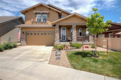 Parker Single Family Home Active: 6731 Pinery Villa Place