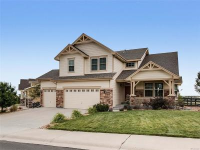 Castle Rock Single Family Home Active: 3372 Wingtip Way