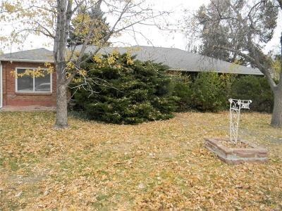 Aurora, Denver Single Family Home Under Contract: 1104 Quentin Street