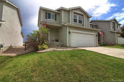 Littleton Single Family Home Active: 9677 Marmot Ridge Circle